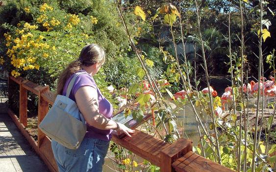 riverbanks botanical garden parking